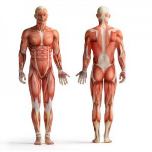 London Rheumatologist - help with arthritis
