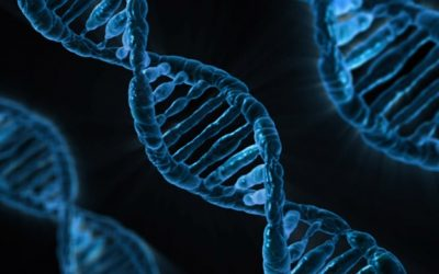 Rheumatoid Arthritis and Genetics